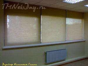 Рулонные шторы в кабинете (2)