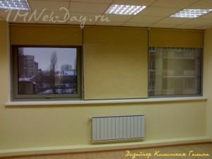 Рулонные шторы в кабинете