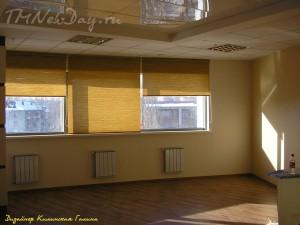 Рулонные шторы в кабинете АУП