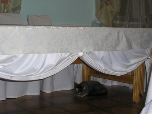 Скатерть в гостиной (4)